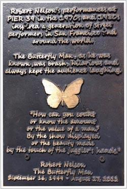 04-Butterfly